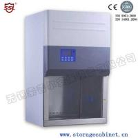 Cheap Professional Class II BIO Safety Cabinet A2 With Timer For Laboratory for sale