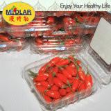 Cheap Ningxia Dried Goji Berry (Wolfberry),Dried Organic Gojiberry Fruit / Chinese Wolfberry,Manufacture Supply Organic Goji B for sale