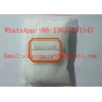 Cheap USP Benzocaine Local Anaesthesia Drugs CAS 94-09-7 Pain Reliver 99% Raw Powder for sale