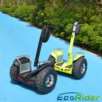 Cheap 19 Inch 2 Wheel Electric Scooter 2000w Outdoor Short - Distance Travel for sale