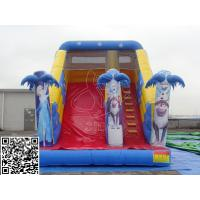 Cheap Attractive Business Rental Inflatable Water Slides Commercial With Climbing Handle for sale