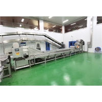 Cheap Food Grade 316 Stainless Steel Tomato Processing Line 400g/Bottle Package for sale