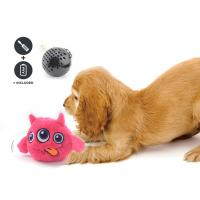 Quality Non Toxic Dog Entertainment Toys , Indoor Plastic Material Pet Dog Toy wholesale