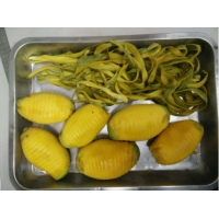 Cheap Concentrated Juice Extracting Mango Processing Line 25T/H for sale