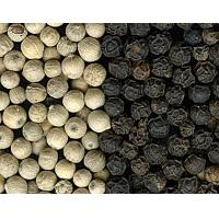 Cheap white and Black pepper for sale