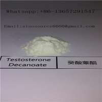 Cheap Anabolic Hormone Steroids Testosterone Decanoate CAS 5721-91-5 For Muscel Gaining for sale