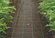 Cheap Weed control mat for sale