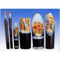 Cheap Plastic insulated control cables for sale