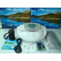 ion cleanse detox foot spa DM101
