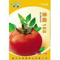 Cheap Holy Deer168- Tomato Seed for sale