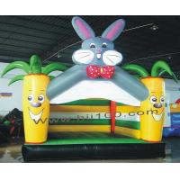 Inflatable Toys HIC-045