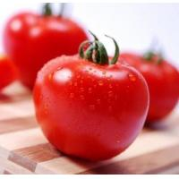 Cheap More.. Tomato Extract for sale