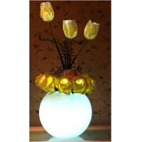 Buy cheap AC1-YJX20-W20-TA LED flowers light from wholesalers