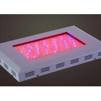Cheap TJ-ZWD4 square LED large power grow light for sale