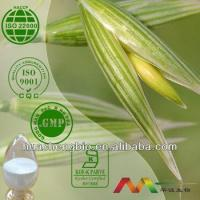 Cheap Natural Avena Sativa Extract for sale