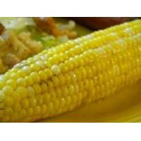 China Grilled Corn on the Cob on sale