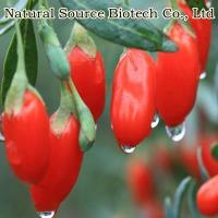 Cheap Goji Series Organic Goji for sale