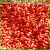 Cheap Goji Series Frozen Goji Berries for sale