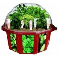 Cheap Culinary Herb Garden for sale