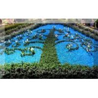 Cheap Recycled Garden Glass Mulch for Landscaping for sale