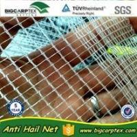 Cheap 50 grm 7x2.8mm HDPE Agriculture Leno anti hail net for sale