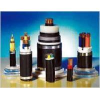 Cheap Plastic Insulated and Sheathed Branch Cable with the Rated voltage at 0.6/1kV and Below for sale
