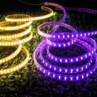 Cheap CE & RoHS approved! LED Strip Light SMD 5050 Double Row Purple for sale