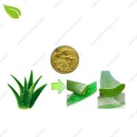 Cheap Aloe Vera Extract for sale