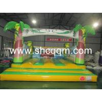 Cheap Inflatable Bouncer CQTC-008 for sale