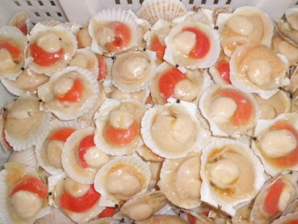 how to cook scallops on the half shell
