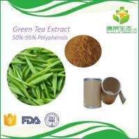 Cheap China Supplier Provided High quality green tea extract polyphenol 98% loss weight agent for sale