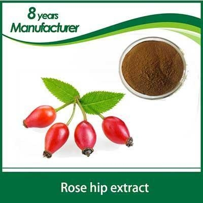 how to use rosehip powder for skin