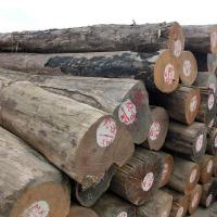 Buy cheap New Products 132~260 Cm Middle Part Diameter Burma Teak Wood from wholesalers