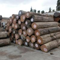 Buy cheap New Trendy Products 4 / 5 / 6 Grade Indian Teak Wood Price for Sale from wholesalers