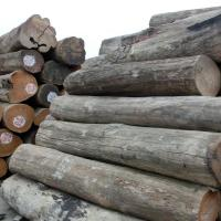 Buy cheap Export Cheap Top Quality Product Authentic Burma Teak Wood Price from wholesalers