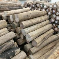 Buy cheap Wholesale Hot Selling Durable Lasting Top Quality Burma Teak Log Prices from wholesalers