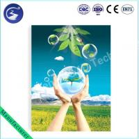 3D Lenticular Public Charity for Environment Poster Manufactures