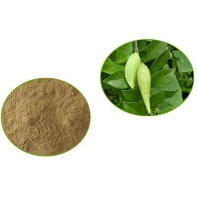 Research papers on gymnema sylvestre