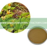 Cheap Top Quality Extract Powder of Epimedium for sale