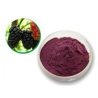 Cheap Mulberry Leaf P.E mulberry leaf extract mulberry leaf powder for sale