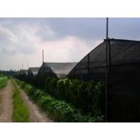 insect proof net for greenhouse