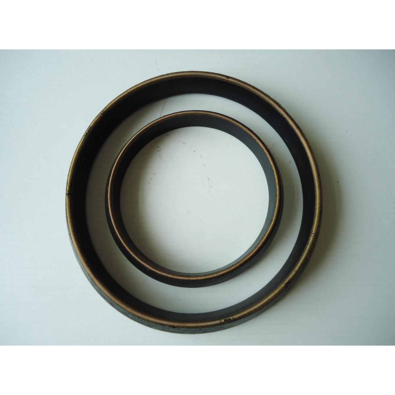 Rubber gasket with spring