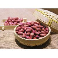 Cheap Peanut Roasted Peanuts With Red Skin for sale