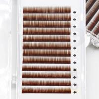 Individual Eyebrow Extensions with Eyebrow Extension Kit