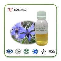 Cheap Borage Oil Extraction method: Cold-pressed for sale