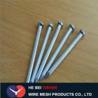 Cheap Hot-dipped galvanized steel concrete nails sale for sale