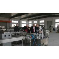 Cheap Completely auto-aerosol filling machine for sale