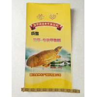 Buy cheap Jinjia marketable turtle (front) from wholesalers