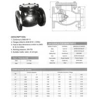 Class 125 Swing Check Valve, Flanged Type