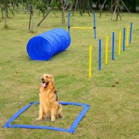 Buy cheap Professional Dog Agility Equipment from wholesalers